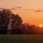 Laurelwood-sunset-spectacular